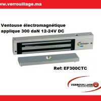 ventouse electromagnetique